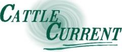Cattle Current Market Update Logo